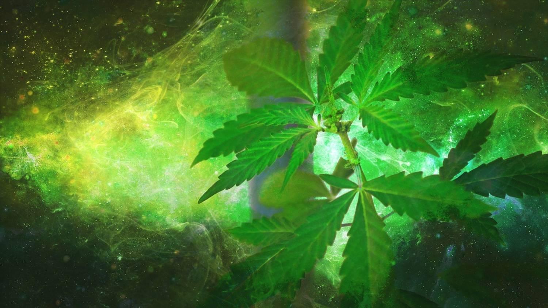 Marihuana lecznicza - gdzie legalna